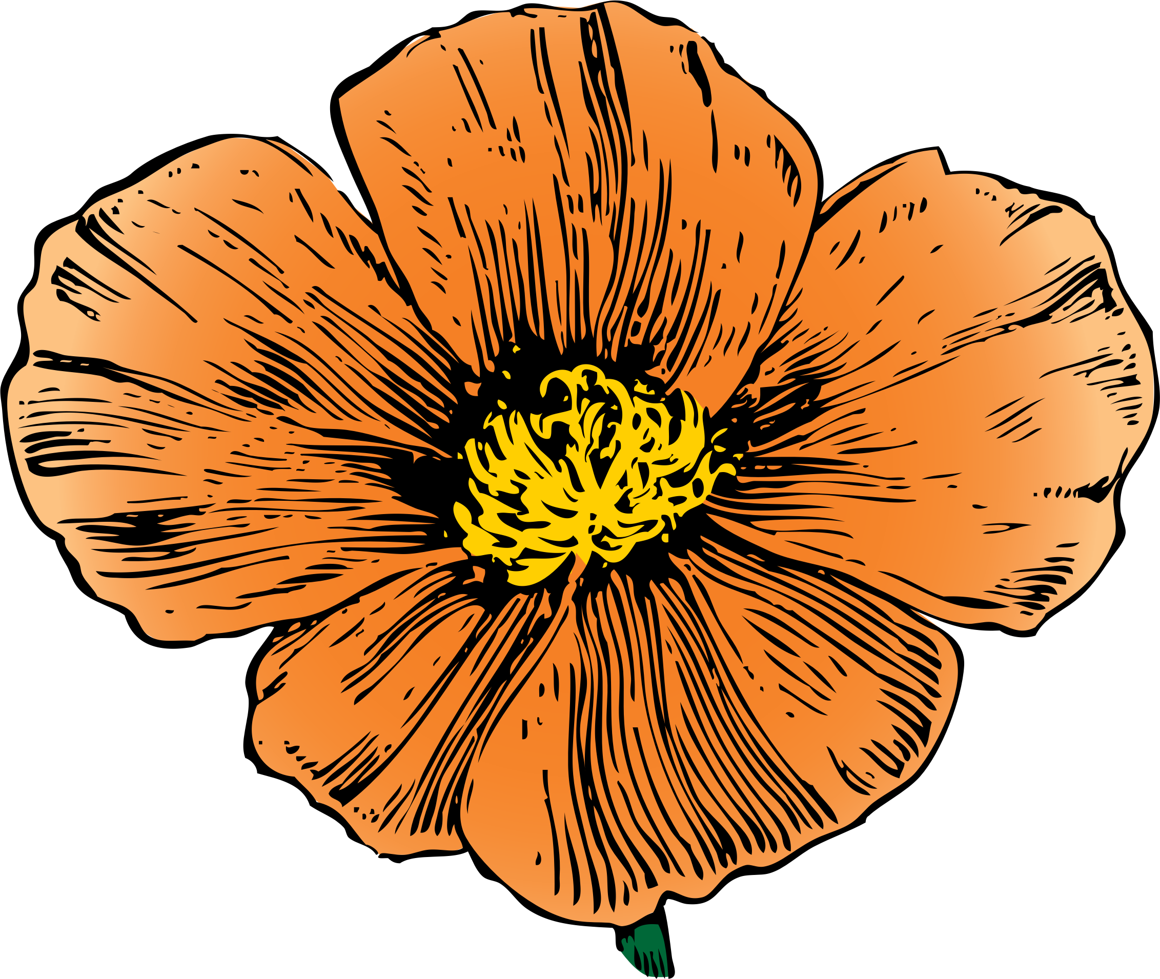 Mxcan house clipart jpg free California Poppy by @johnny_automatic, from an ad in House and ... jpg free