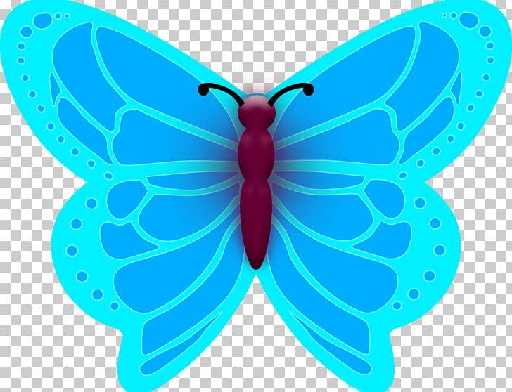 Microsoft butterfly clipart jpg transparent Moth Turquoise Symmetry Microsoft Azure PNG, Clipart ... jpg transparent