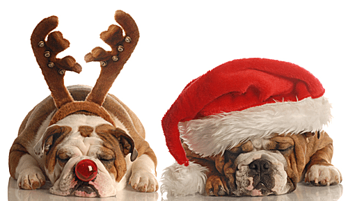 Microsoft clipart big dog picture download Favorite Sites for Christmas Clip Art picture download