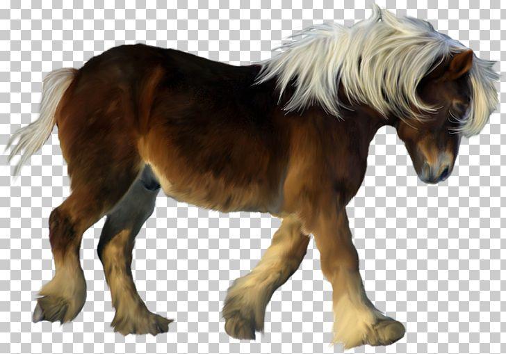 Miniature horse clipart vector freeuse American Miniature Horse My Little Pony Icon PNG, Clipart, American ... vector freeuse