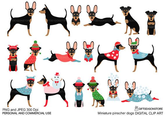 Miniature pinscher clipart graphic black and white Miniature pinscher dogs Digital clip art for Personal and Commercial ... graphic black and white