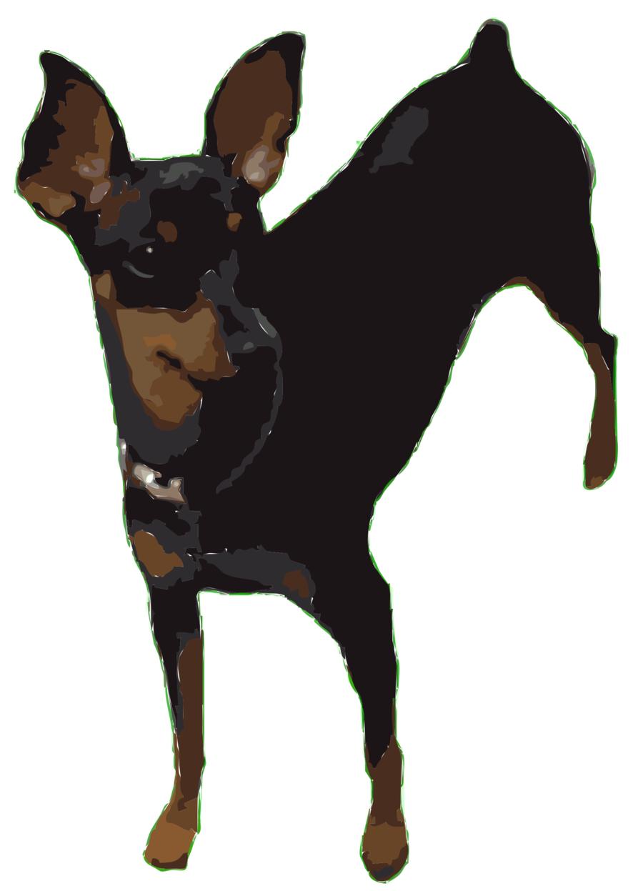 Miniature pinscher clipart image library library Fox Cartoon clipart - Dog, transparent clip art image library library