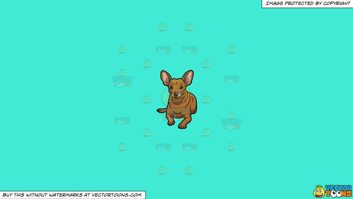 Miniature pinscher clipart graphic royalty free download Clipart: A Resting Miniature Pinscher Dog on a Solid Turquiose 41Ead4  Background graphic royalty free download