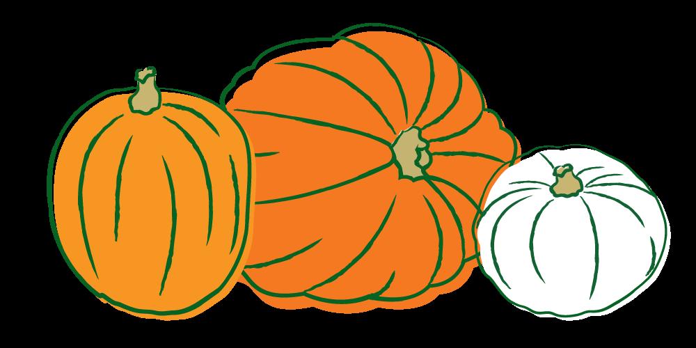 Minimal pumpkin clipart vector transparent stock Casper Pumpkin - Home Farmer vector transparent stock