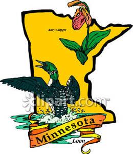 Minnesota map clipart clip art transparent stock State Bird and Flower of Minnesota Over Minnesota Map - Royalty Free ... clip art transparent stock
