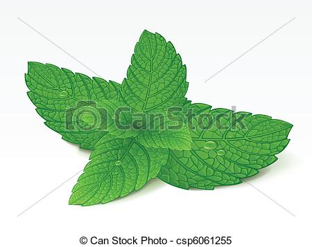 Mint clipart graphic free Mint Clipart and Stock Illustrations. 10,996 Mint vector EPS ... graphic free