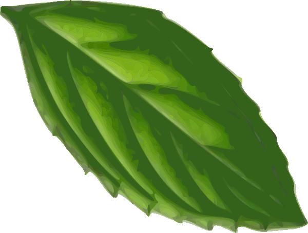 Mint clipart jpg transparent library Mint Leaf Clipart - Clipart Kid jpg transparent library