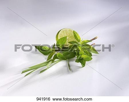 Mint grass clipart jpg download Stock Images of Lemon grass, pineapple sage, mint, lemon verbena ... jpg download