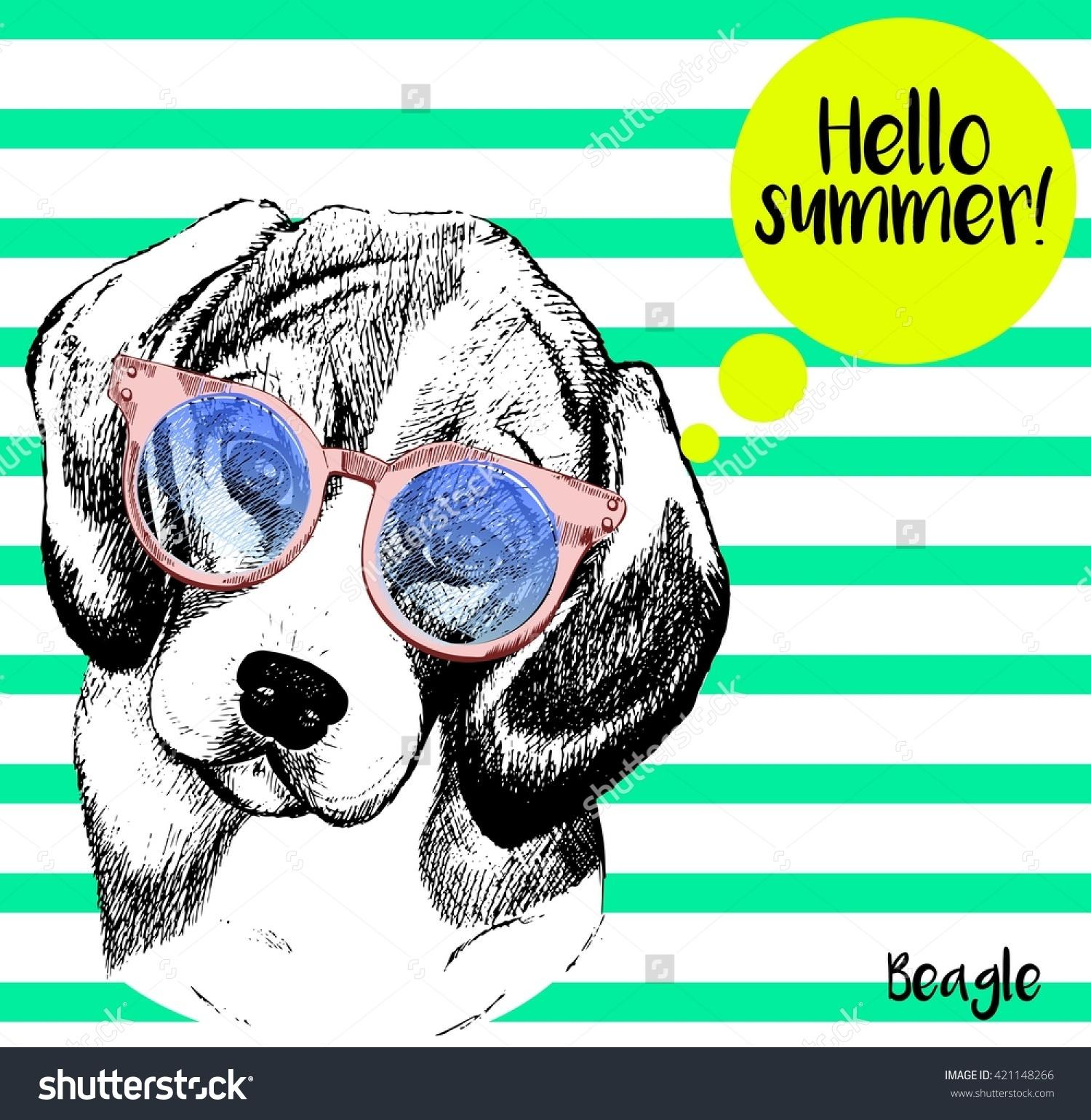 Mint green sunglasses clipart clip free stock Vector Close Portrait Beagle Dog Wearing Stock Vector 421148266 ... clip free stock