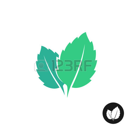 Mint leaf clip art vector transparent library 6,323 Mint Leaf Stock Illustrations, Cliparts And Royalty Free ... vector transparent library