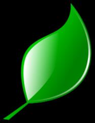 Mint leaf clip art banner free Mint Leaf Clouring - ClipArt Best banner free