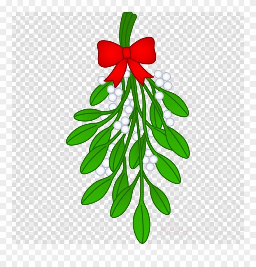 Mistletoe clipart transparent jpg stock Mistletoe Clipart Christmas Mistletoe Clip Art - Transparent ... jpg stock