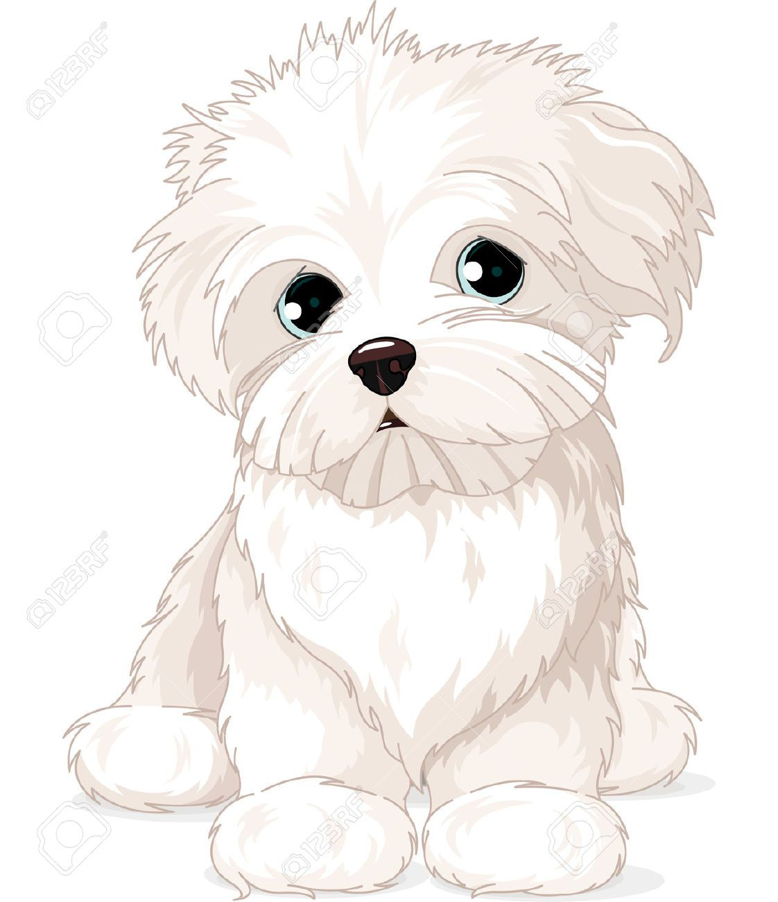 Mixed breed dog clipart clipart transparent stock maltese dog: Clipart Maltese . | Busy Boards for Auggie ... clipart transparent stock