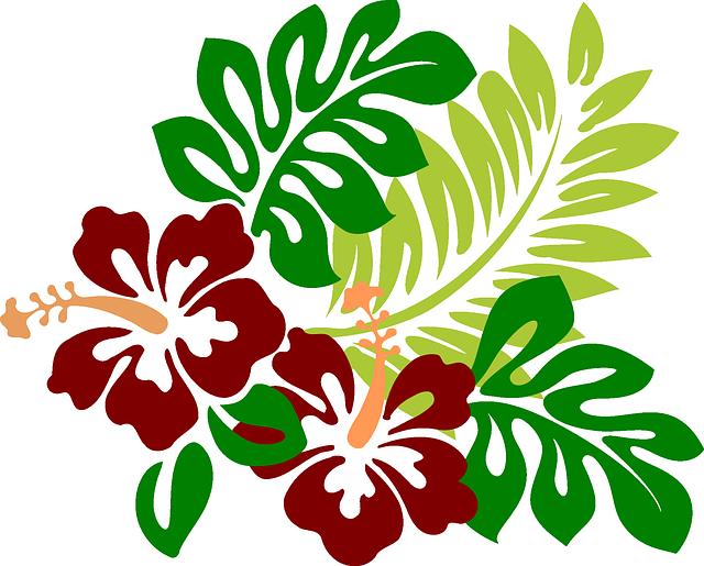 Moana flower clipart image black and white download Imagen gratis en Pixabay - Hibisco, Flores, Rojo, Tropicales ... image black and white download