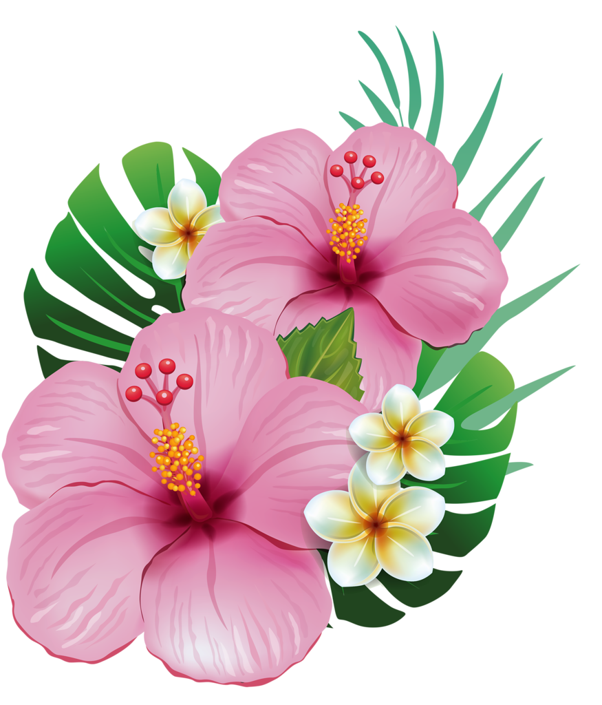 Moana flower clipart jpg library download 5.png | Hawaiian, Moana and Flowers jpg library download