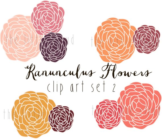 Modern clipart flowers image freeuse stock Pin by Etsy on Products | Flower clipart, Clip art, Ranunculus image freeuse stock