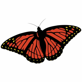 Monarch butterfly clipart clip freeuse stock Colorful Butterflies Cartoon Png Clipart Monarch Butterfly ... clip freeuse stock
