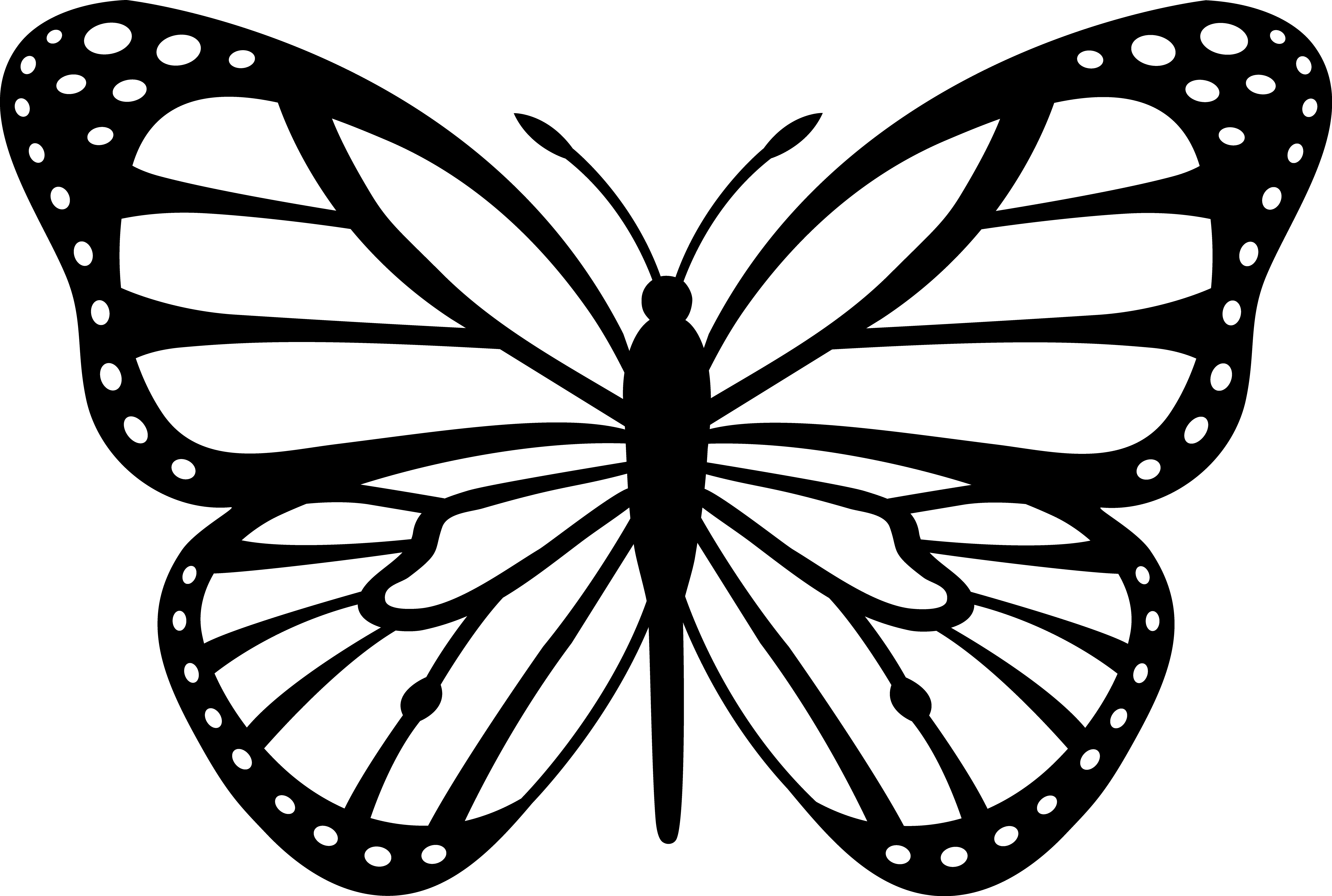 Monarch butterfly clipart free vector black and white download Monarch Butterfly Template. monarch butterfly template free ... vector black and white download