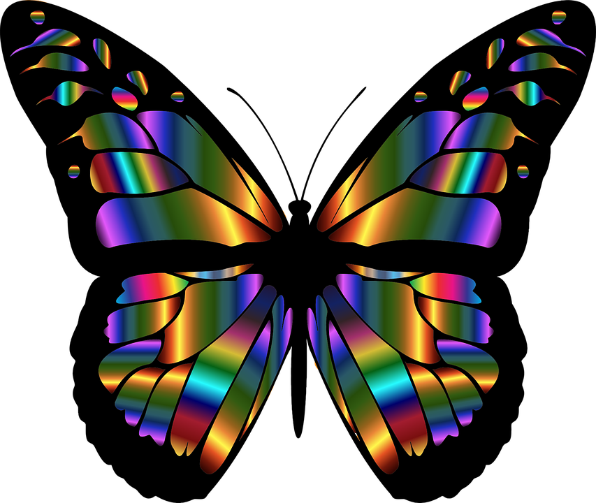 Monarch butterfly clipart free clip freeuse download Monarch, Butterfly - Free images on Pixabay clip freeuse download