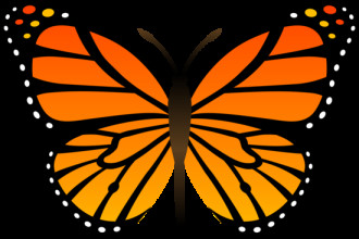 Monarch butterfly clipart free transparent stock Monarch butterfly clipart free - ClipartFest transparent stock