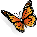 Monarch butterfly clipart free clipart black and white Free Monarch Butterfly Clip Art & Icons | IconBug.com clipart black and white