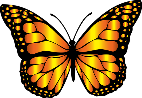 Monarch butterfly clipart free image Monarch, Butterfly - Free images on Pixabay image