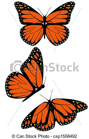 Monarch butterfly clipart free clip library library Monarch butterfly Stock Illustration Images. 3,119 Monarch ... clip library library