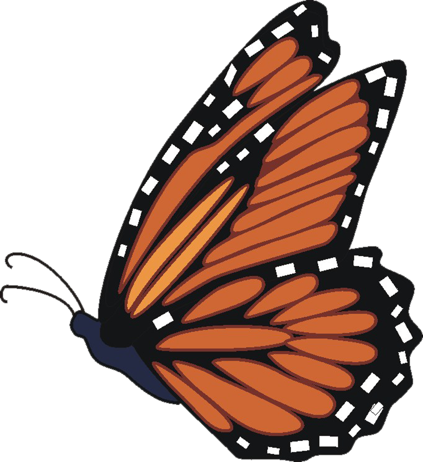 Monarch butterfly clipart free png download Monarch butterfly clipart - ClipartFest png download