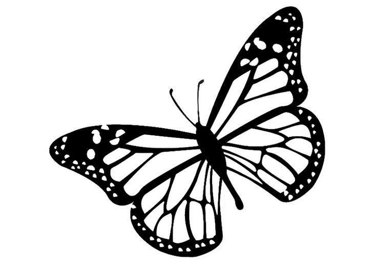 Monarch butterfly clipart free clip transparent library Monarch Butterfly Clip Art & Monarch Butterfly Clip Art Clip Art ... clip transparent library