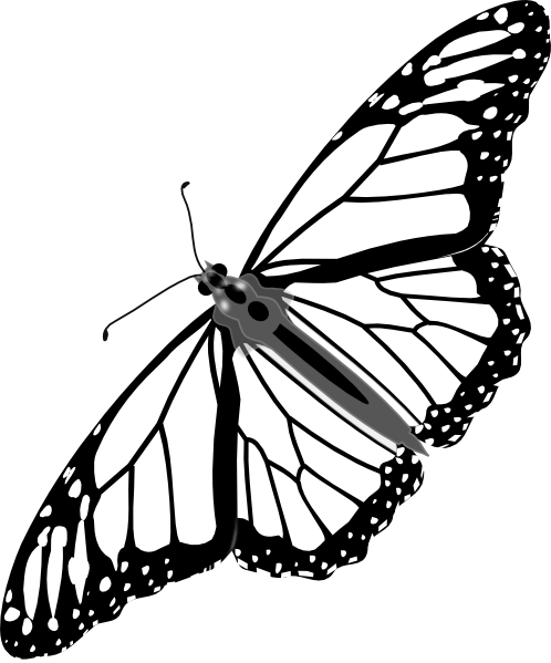 Monarch butterfly clipart free graphic transparent stock Monarch clipart free - ClipartFest graphic transparent stock