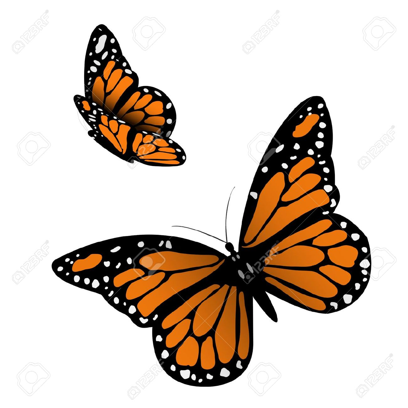 Monarch butterfly clipart free graphic library download Free monarch butterfly clipart - ClipartFest graphic library download