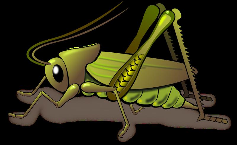 Money clipart clipartpanda jpg library library Cricket Insect Clipart cricket insect clipart clipart panda free ... jpg library library