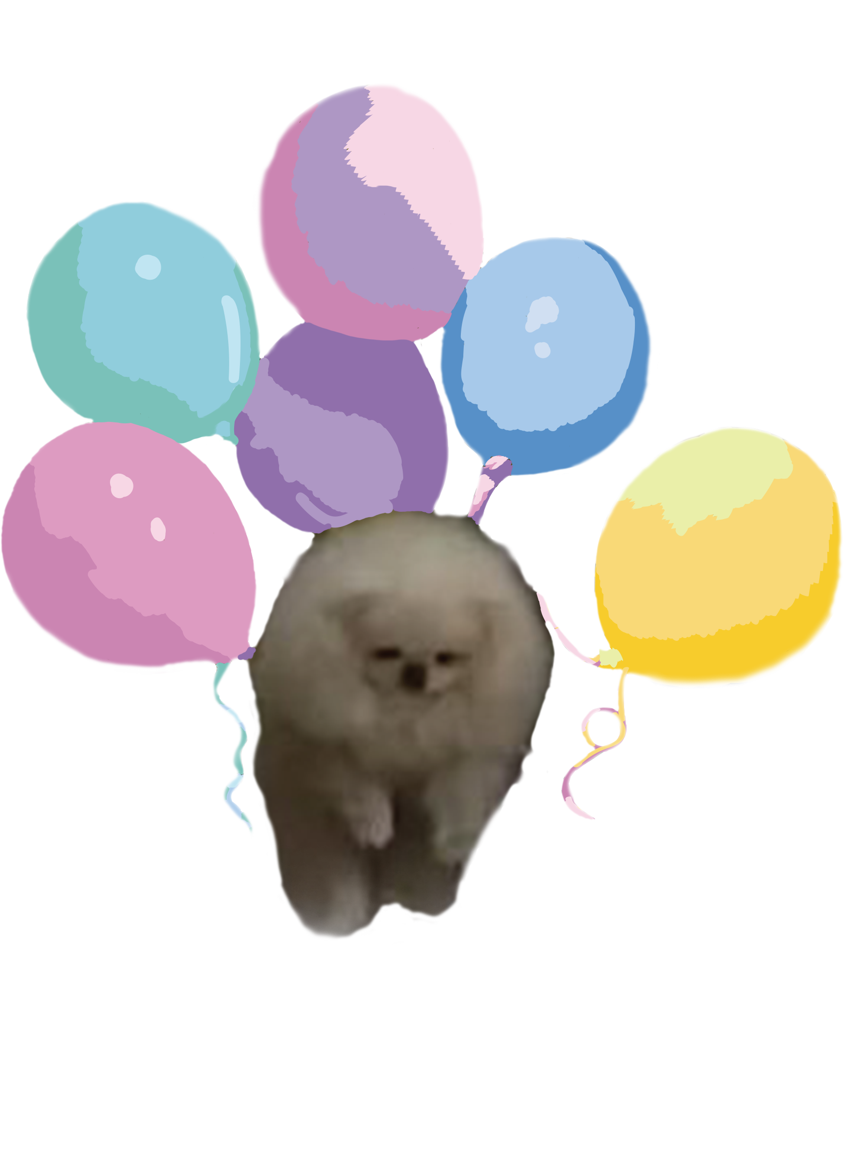 Money flies away clipart svg royalty free download the pomeranian with balloon drawings show how light a pomeranian is ... svg royalty free download