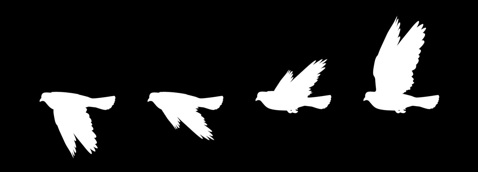 Money flies away clipart clip art royalty free SIMPLE FLYING BIRD VECTORS - Google Search | BLACKBIRD | Pinterest ... clip art royalty free