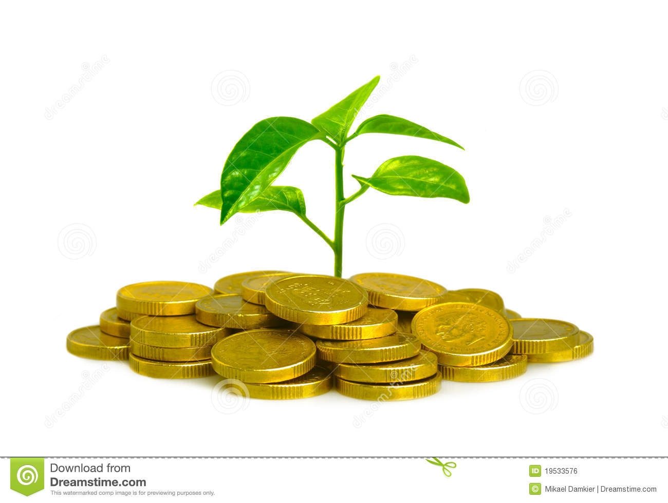 Money plant images clipart vector free download Money Plant Images Clipart - clipartsgram.com vector free download