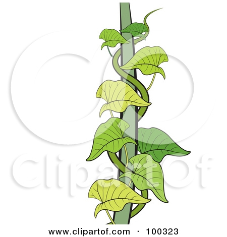 Money plant images clipart svg black and white download Money plant images clipart - ClipartFest svg black and white download