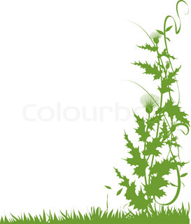 Money plant images clipart picture Buy Stock Photos of Growing Plant | Colourbox picture