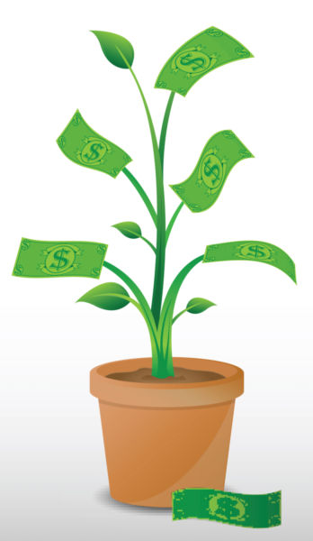 Money plant images clipart clip stock Vector image of a money plant. - stock photo free clip stock