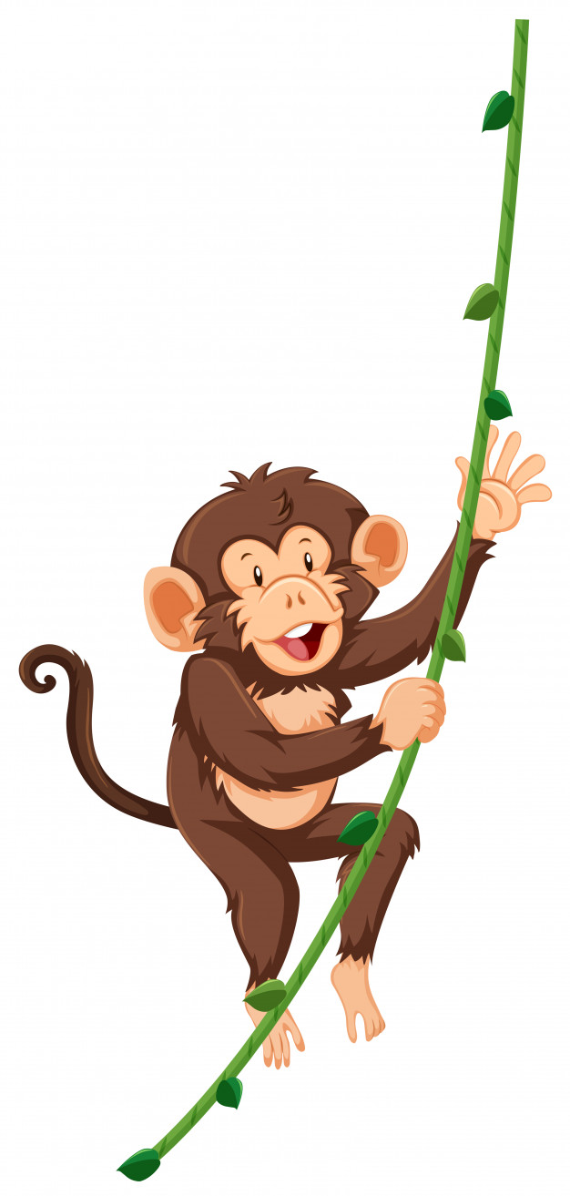 Monkey on vine clipart graphic download Monkey on vine white background Vector | Free Download graphic download