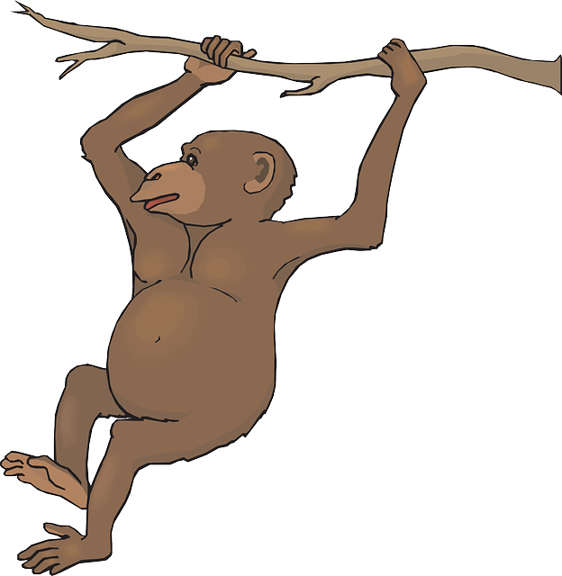 Monkey swinging from tree clipart png library Swinging Monkey Clipart | Clipart Panda - Free Clipart Images png library