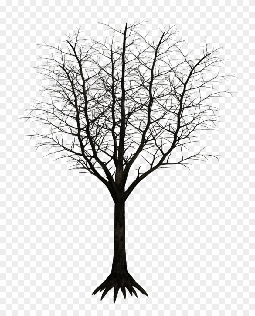 Monochrome photography clipart svg royalty free stock Free Download Monochrome Photography Clipart Twig Black - Dark Trees ... svg royalty free stock