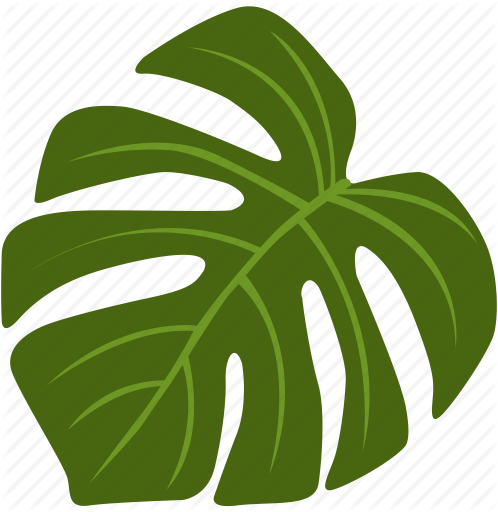 Monstera leaf clipart banner free download \'Exotic flowers and plants\' by A B Designer banner free download