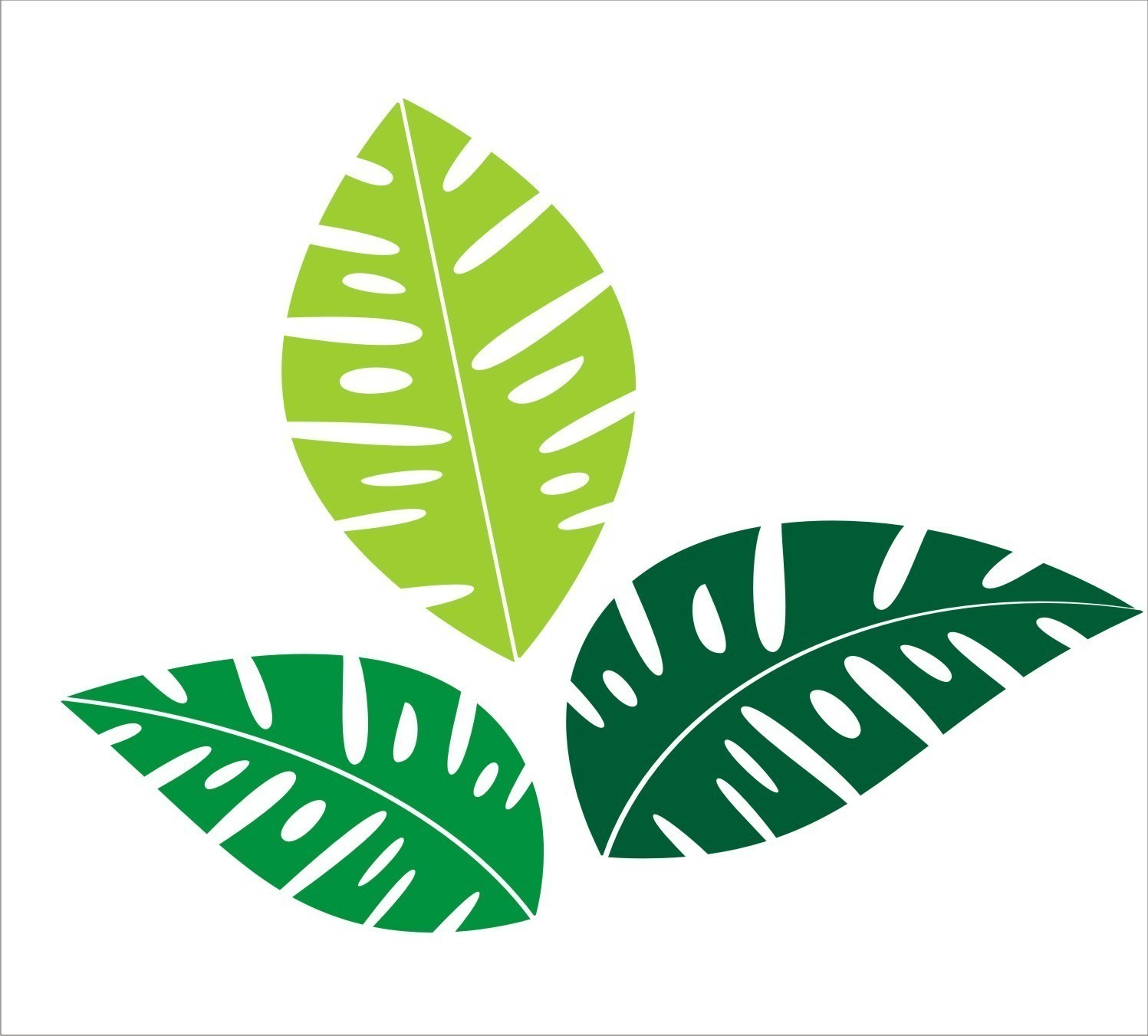 Monstera leaf clipart image royalty free Free Tropical Leaf Cliparts, Download Free Clip Art, Free Clip Art ... image royalty free