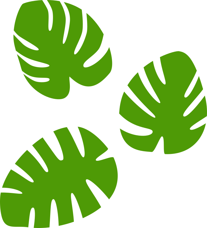 Monstera leaf clipart clipart Monstera leaves | leaves png images | Leaf clipart, Plant leaves, Leaves clipart