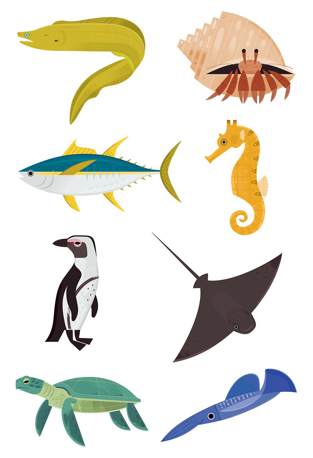 Monterey bay aquarium clipart jpg royalty free stock Monterey Bay Aquarium Icons on Behance jpg royalty free stock