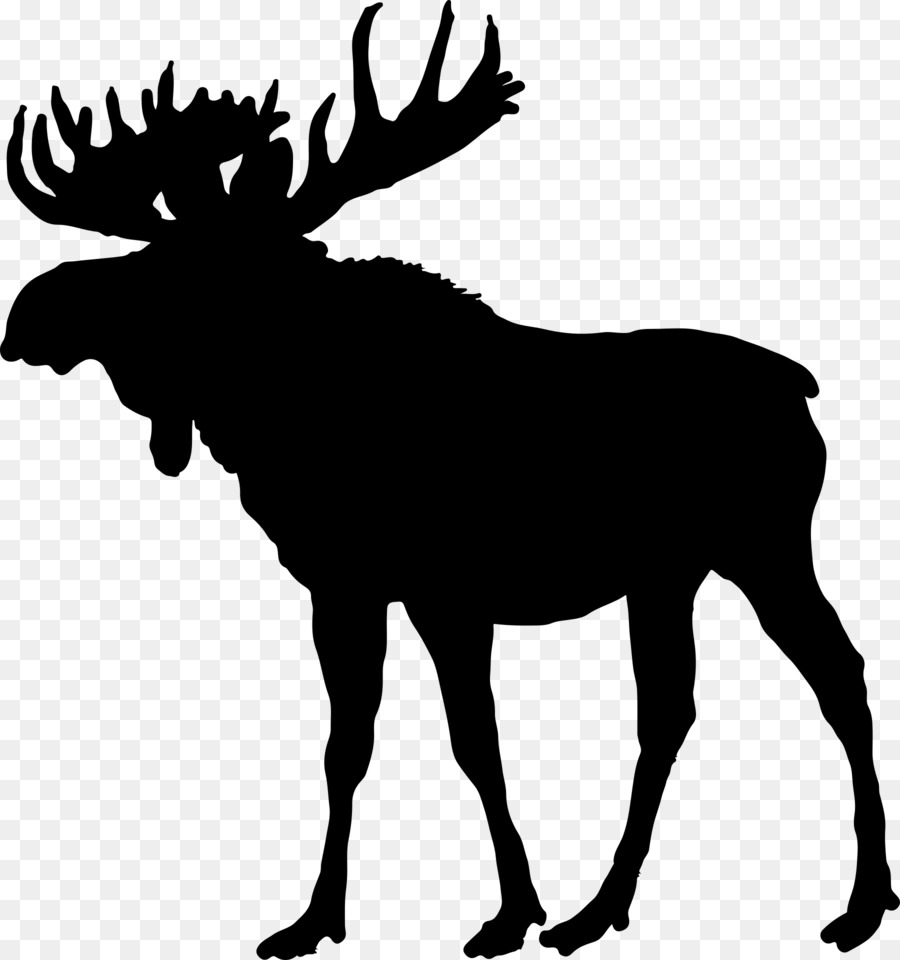Moose fighting clipart graphic freeuse download Tree Silhouette png download - 1800*1920 - Free Transparent Moose ... graphic freeuse download