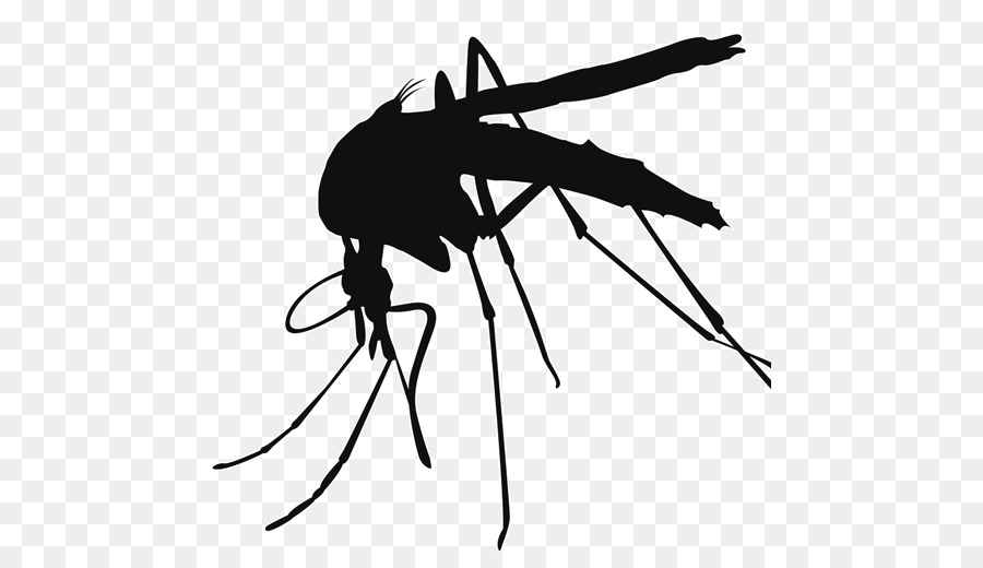 Mosquito clipart banner freeuse stock Mosquito Cartoon clipart - Black, Wing, Line, transparent ... banner freeuse stock