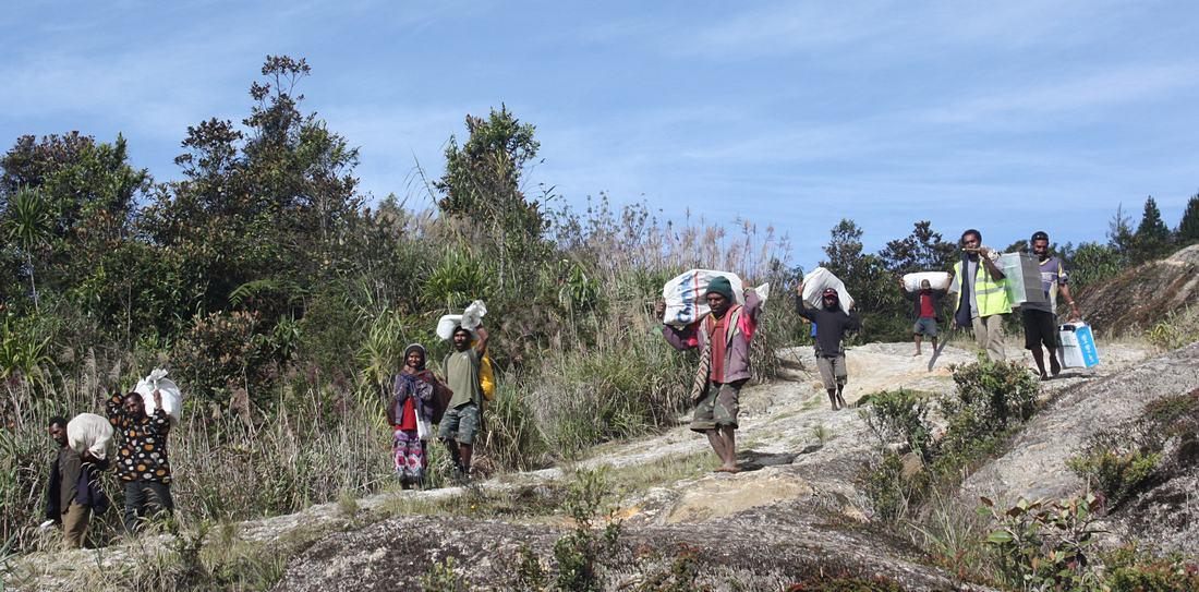 Mount wilhelm clipart clipart download Mt. Wilhelm - biodiversity, researchers in rainforest ... clipart download