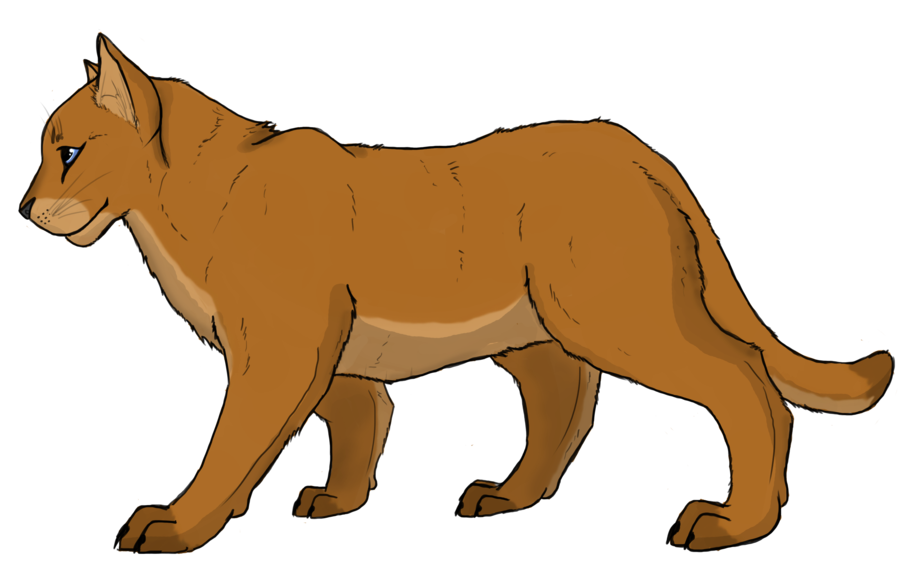 Mountain cat clipart clipart transparent library Mountain Lion Drawing at GetDrawings.com | Free for personal use ... clipart transparent library