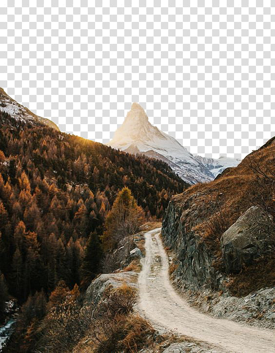 Mountain with trees and road clipart black and white jpg library download Fall, gray road near mountain transparent background PNG ... jpg library download